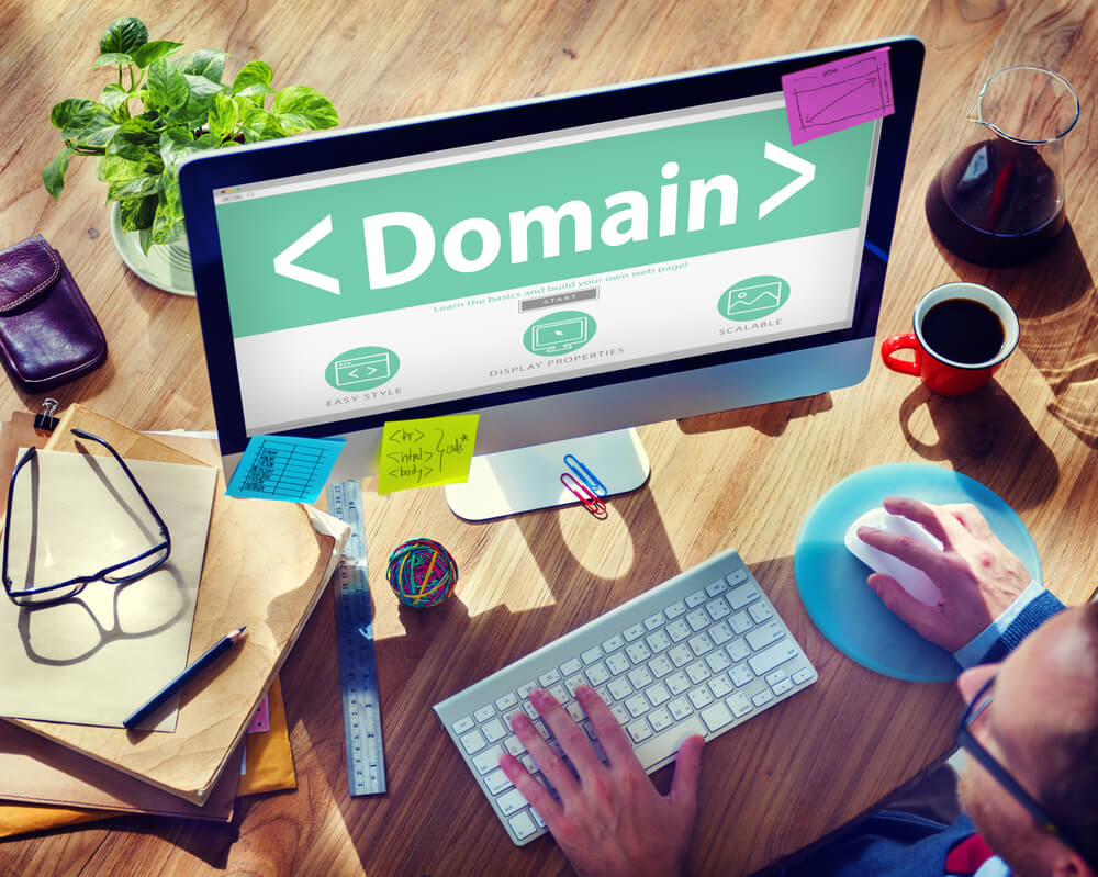 Monitoring Newly Registered Domains